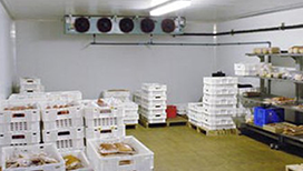 Cold-Storage Manufacturer