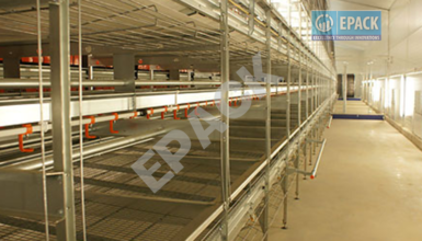 Poultry-Shed-Supplier